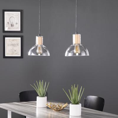 Adrienne Pendant Lamps - 2pc Set