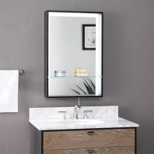 Wervin Lighted Mirror w/ Shelf