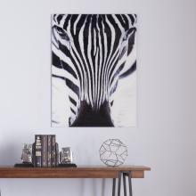 The Zebra Glass Wall Art
