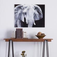The Elephant Glass Wall Art